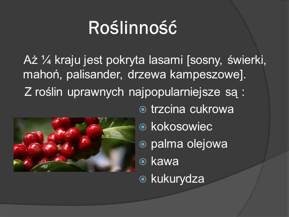 Roślinność Aż ¼ kraju jest pokryta lasami [sosny, świerki, mahoń, palisander, drzewa kampeszowe]. Z roślin uprawnych najpopularniejsze są :